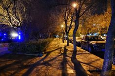#china_photos #streetphotography #nightphotograghy #streetlight #trees #treepark #nightview #1st #business #trip #2016 #silhouette #travel #traveling #snapshot #photooftheday #bestskyever #wondercaptures #beautiful #beautifulday #recent4recent #likeforlike #streamzoofamily #streamzoo #eyeem #moststunningshot #tr_colors #instalikes #likeforlike by parkjc1