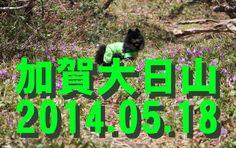 【石川散策物語】 大日山縦走 2014.05.18