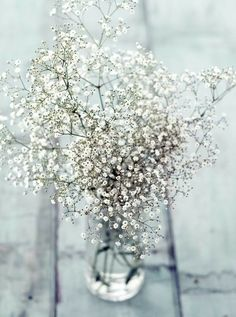 baby's breath makes a beautiful bouquet on its own Winter Wedding Centerpieces, Wedding Table, Wedding Decorations, Elegant Centerpieces, Table Decorations, Centerpiece Ideas, White Centerpiece, Spring Decorations, Decor Wedding