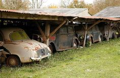 Maserati, Ferrari 250 Gt California, Vintage Cars, Antique Cars, Carros Vintage, Car Barn, Rusty Cars, Abandoned Cars, Abandoned Vehicles