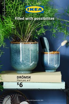 Indoor Gardening, Indoor Plants, Ikea I, Prairie Garden, Living Room Decor Inspiration, Craft Space, Home Board, Soothing Colors, Container Flowers