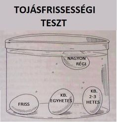 Tojás teszt. Easy Cooking, Cooking Tips, Sports Food, Natural Health Remedies, Survival, No Cook Meals, My Favorite Food, Food Hacks, Good To Know