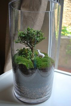 More terrarium design. (Is that a real bonsai tree!? I can't imagine it is.)