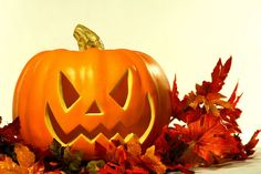 images of halloween | Did you enjoy Halloween? I am sure you will like this random pictures ...
