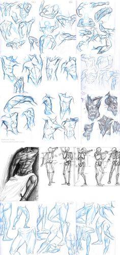 Anatomy Dump 2 by *Tyshea on deviantART