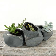 "Growing Stones Succulent Planter - Set of 3 | dotandbo.com $134.99 QUALITIES  Dimensions (Large): 6"" L x 4.5"" W x 4.5"" H  Dimensions (Medium): 5.5"" L x 3.5"" W x 3.5"" H  Dimensions (Small): 5.5"" L x 3.5"" W x 3"" H  Materials: Porcelain, felt, rubber  Features: Drainage hole with rubber plug; felt pads to protect surfaces  Includes: Set of 3 (plants not included)  Handmade in New York"