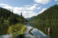Lacul Rosu (Red Lake) - Romania Red Lake, Timeline Photos, Natural Wonders, Hungary, Beautiful World, Places To Visit, Wanderlust, River, Country