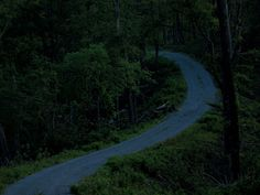 Dirt-Road-at-Night by crossquill, via Flickr