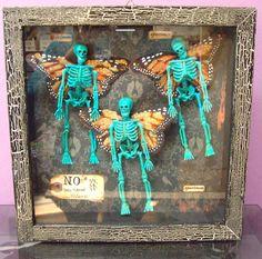 Skele-Butterflies  Specimen a unique gothic shadowbox  day of the dead dia de los muertos. $68.00, via Etsy.