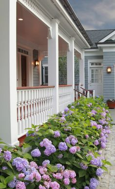 Someday, I would like blue/purple or light purple hydrangeas around my house. ^_^