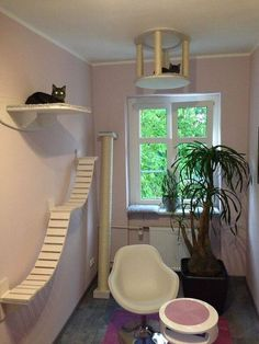 cute and funky cat house ideas - indoor outdoor - Cat playground outdor - How to create a perfect outdoor play area