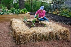 The No Dig Less Fuss Simple Vegetable Garden System with Bales | Happy House and Garden