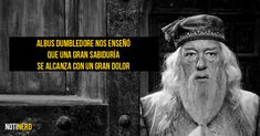 Albus Dumbledore - See the 30 Things That Harry Potter taught us Harry Potter Tumblr, Harry Potter Film, Harry Potter Pictures, Harry Potter Quotes, Harry Potter Love, Harry Potter Characters, Harry Potter Universal, Harry Potter World, Hp Quotes