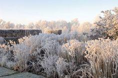 winter garden by Piet Oudolf