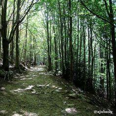 El Montseny és 100% Natura! #ObrelaPortaBCN
