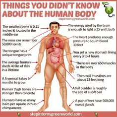 7 Amazing Limits Of The Human Body | Human Body Facts | Pinterest ...