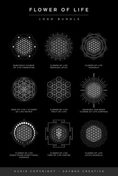 This Flower of Life poster shows various sacred formations of the flower of life, their names and meanings. I created this logo set from a super strong passion for Sacred Geometry and my desire to bring more geometric magic to the world! Sacred Geometry Meanings, Sacred Geometry Patterns, Sacred Geometry Tattoo, Sacred Symbols, Nature Geometry, Nordic Symbols, Geometric Tattoo Meaning, Geometric Tattoo Design, Geometric Flower
