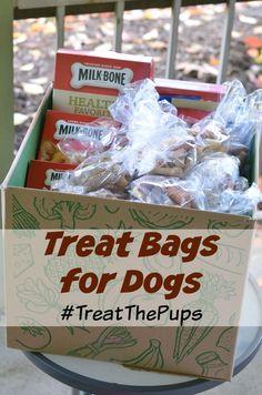 DIY #TreatThePups Thanksgiving Gift Bags   Kid-Friendly Activity #sponsored