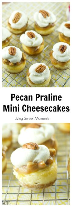 ... bites are topped with pecan praline and chantilly cream. I want them