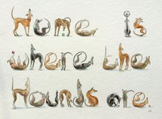 Home is where the hounds are!