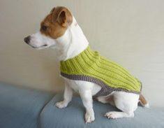 Sueter para mi mascota de crochet.