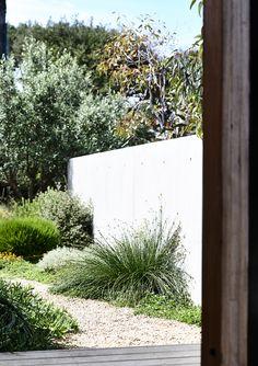 Cool 36 Elegant Coastal Gardens Design Kdeas That Like A Paradise. Coastal Landscaping, Backyard Landscaping, Plant Design, Garden Design, Australian Native Garden, Coastal Decor, Modern Coastal, Coastal Curtains, Coastal Rugs