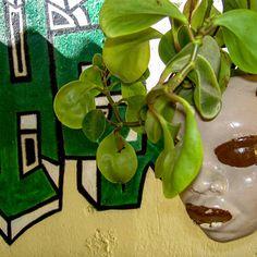 Insta Pictures, Havana, Cuba, Travel Photography, Artist, Instagram, Artists, Travel Photos