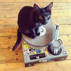 Platine DJ pour chat en carton (le grattoir, pas le chaton)   Suck UK @bonjourbibiche #cadeau #cat #musique
