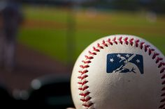 Minor League Baseball - Williamsport Cubs, Auburn Doubledays, Kane County Cougars and Williamsport Crosscutters