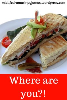 A funny blog post from Midlife Dramas in Pyjamas. I got my PANINI MAKER OUT FOR GOODNESS SAKE!