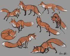 Drawing The Human Figure - Tips For Beginners Drawing Tips fox drawing Animal Sketches, Animal Drawings, Cute Drawings, Drawing Sketches, Drawing Tips, Cute Fox Drawing, Contour Drawings, Drawing Ideas, Gesture Drawing Poses