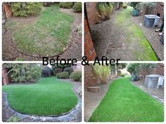Before and after SYNLawn