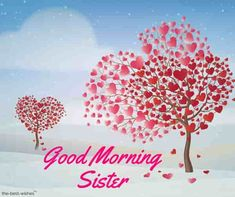 For you, we have collected the Good Morning Angel wishes Pictures. You can share these cute angel images message with your daughter, wife or girlfriend. Good Morning Darling Images, Good Morning Sister Images, Good Morning Sweetheart Images, Good Night Sister, Good Morning Honey, Good Morning Angel, Good Night I Love You, Good Morning Beautiful Quotes, Good Morning Texts