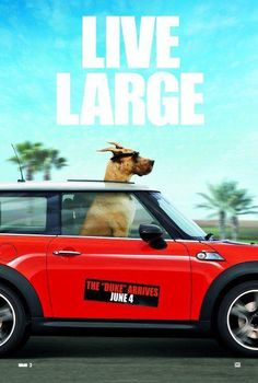 Marmaduke. I've got the mini. I just need the enormous dog