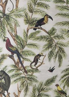 In this jungle inspired wallpaper design from Miki Rose, a variety of monkeys, parrots and toucans nestle among green palms on a subtle neutral backgrou. Tropical Wallpaper, Bird Wallpaper, Wallpaper Paste, Print Wallpaper, Wallpaper Roll, Wallpaper Jungle, Animal Wallpaper, Quito, Wall Paper Iphone