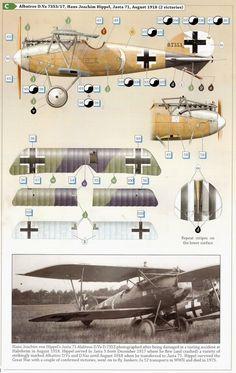 AeroScale :: Wingnut Wings Albatros D.Va