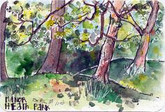 Trees in Spring watercolour and pen sketch on postcard by Sophie Peanut Landscape Sketch, Modern Landscape Design, Landscape Walls, Landscape Paintings, Watercolor Postcard, Pen And Watercolor, Pen Sketch, Sketches, Desert Landscaping Backyard