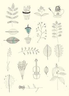 Herbs and plants. Katt Frank illustration.