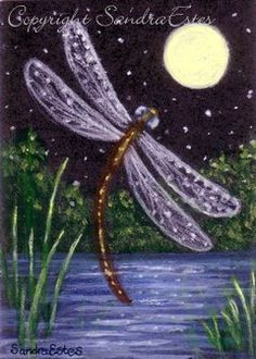 Paintings by Sandra Estes: My Reflections of Grace: Original ACEO Painting Dragonfly Dream Night Pond Moon Dragonfly Drawing, Dragonfly Painting, Dragonfly Art, Dragonfly Jewelry, Dream Night, Easy Paintings, Canvas Paintings, Pictures To Paint, Painting & Drawing