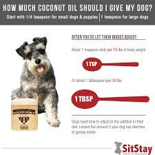 I'm a big advocate for coconut oil, has a range of health benefits for humans; however, what may be surprising is the benefit it has for dogs. Whether you put it in their food, or use it on their skin if your dog is experiencing eczema.  Here's a full article on the benefits of coconut oil for your dog: https://www.sitstay.com/blogs/good-dog-blog/coconut-oil-for-dogs