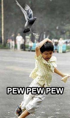 Bird poop bombing! pew! pew! pew! I seriously died