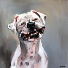 All the things we love about the Patient Boxer Dogs I Love Dogs, Cute Dogs, Dog Stories, Boxer Love, Boxer Puppies, Pet Portraits, School Portraits, Portrait Ideas, Dogs Of The World