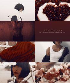 look at that mikasa | Tumblr