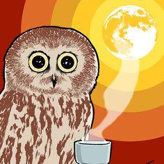 Coffee Owl Bird Full Moon Rainbow 11x14 Giclee by yayforfidgetart