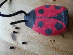 Käfer 11