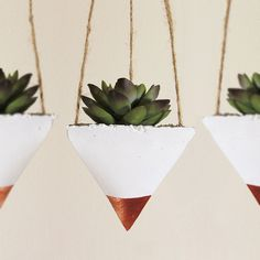 Succulent Planter Concrete Planter Hanging by TimberlineStudio