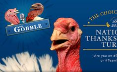 White House turns National Thanksgiving Turkey pardon into 'The Hunger Games' | EW.com...lol...oh my, really?