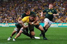 Wallabies hold on to beak Springboks Rugby, Hold On, Sumo, Wrestling, Running, Sports, Lucha Libre, Hs Sports, Naruto Sad
