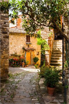 Mediterrane Gasse in der Toskana / Greve / Montefioralle / Tuscany / Mediterranean alley in Tuscany / Italy / Chianti