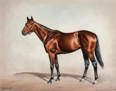 """Richard Stone Reeves (American, 1919-2005) PUCKER UP Oil on board, 11"""" x 14""""  Signed and inscribed Hall of Fame inductee James P. Conway said of his charge Pucker Up, """"She's a fine, solid mare, usually pretty high in flesh."""" As a four-year-old in 1957, Pucker Up was first or second in 10 of 13 starts and was named champion older mare for her efforts. It was a well-deserved title as in the Washington Park Handicap she beat the boys, including the outstanding Swoon's Son."""
